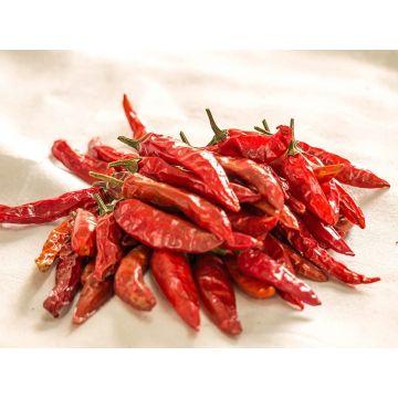 Sukna Morich (Dried Chilli) - 100gm