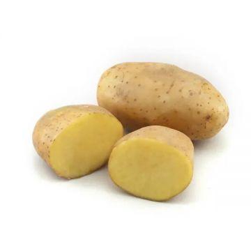 Diamond Aloo (Potato) Premium Loose