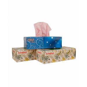 Bashundhara Facial Tissue 150*2 sheet