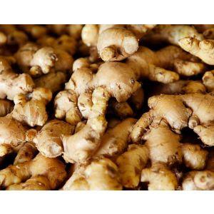 Ginger (Ada) - Indian - 250 gm
