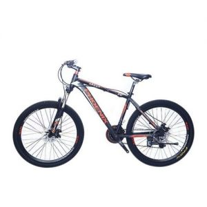 Phoenix Argus Bicycle - 26 inch